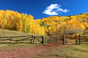 photodune-5768835-horse-park-ranch-in-the-fall-s